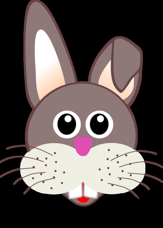 Rabits And Hares,Carnivoran,Hare