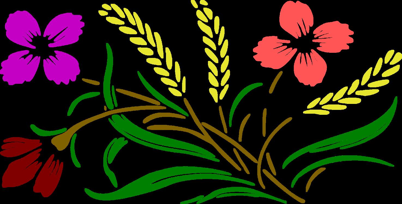 Art,Petal,Seed Plant