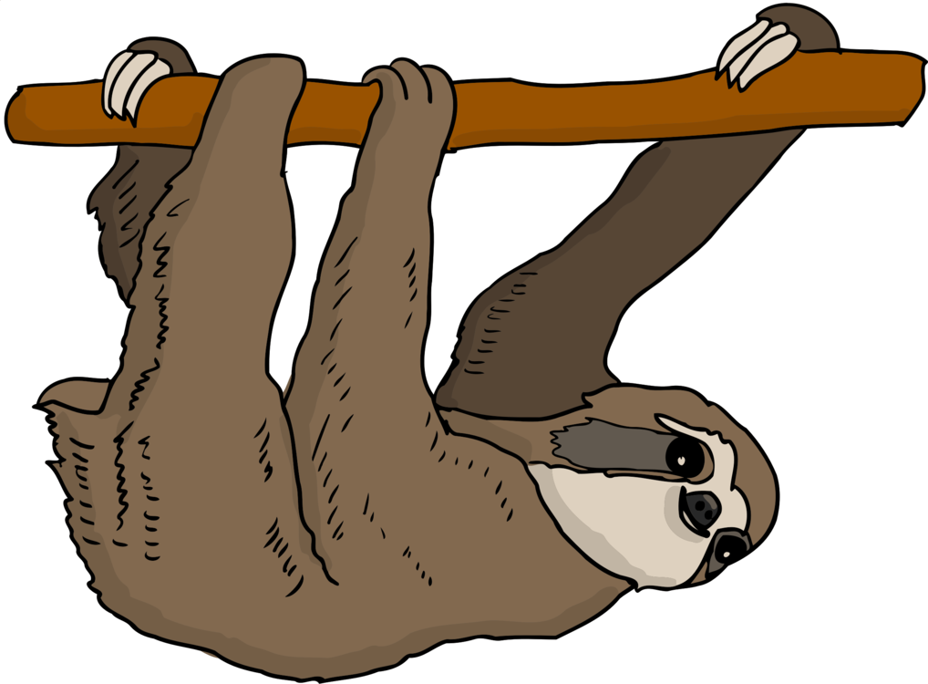 three toed sloth armadillo anteater bear free commercial clipart rh kisscc0 com sloth clip art smiling sloth clip art images
