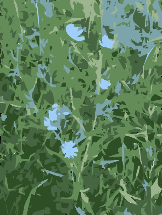 Tree,Plant,Grass