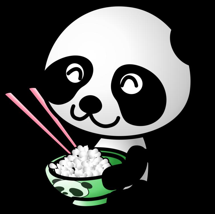Giant Panda,Carnivoran,Bear