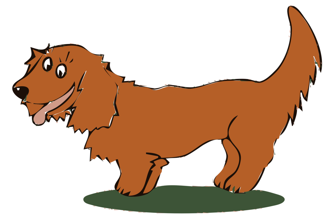 Paw,Carnivoran,Dog