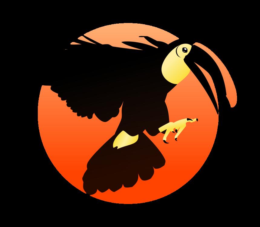 Eagle,Bald Eagle,Wing