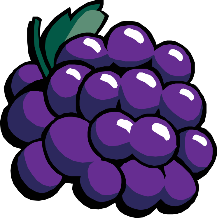 Plant,Flower,Grape