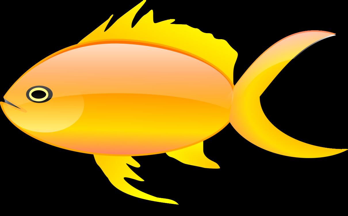 Fish,Yellow,Seafood