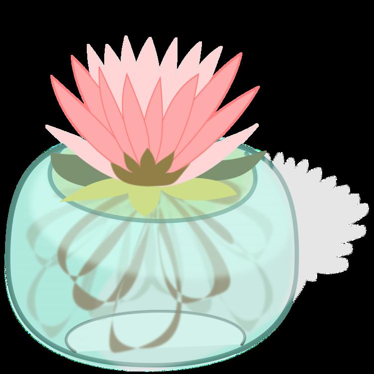 Plant,Flora,Peach