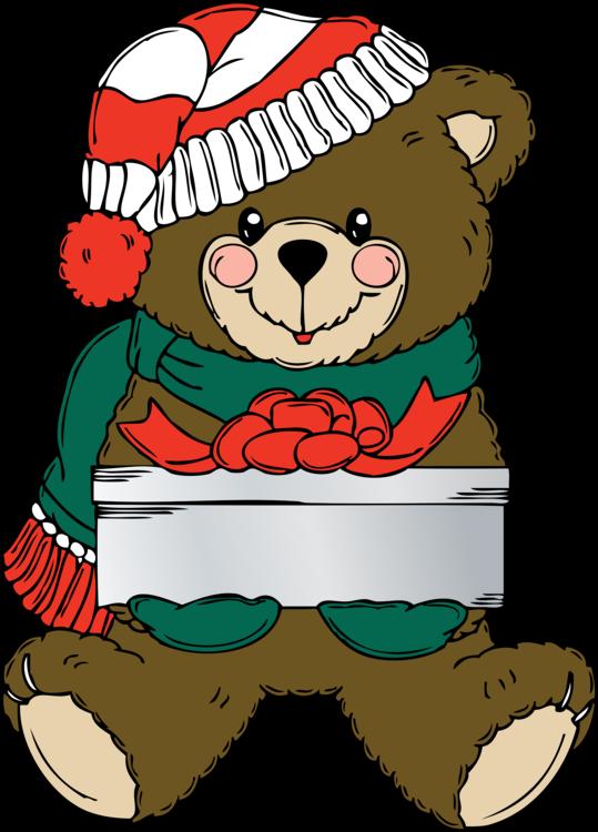 Teddy Bear,Food,Carnivoran