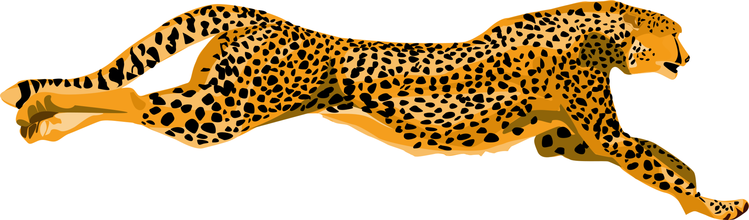 cheetah jaguar felidae leopard lion free commercial clipart rh kisscc0 com cheetah clip art svg cheetah clip art svg