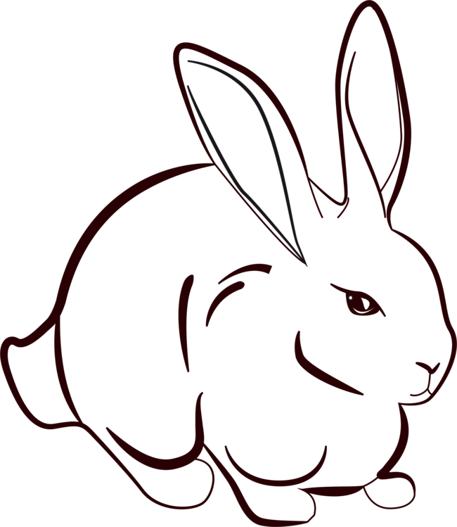 Line Art Drawing Rabbit Hare Free Commercial Clipart