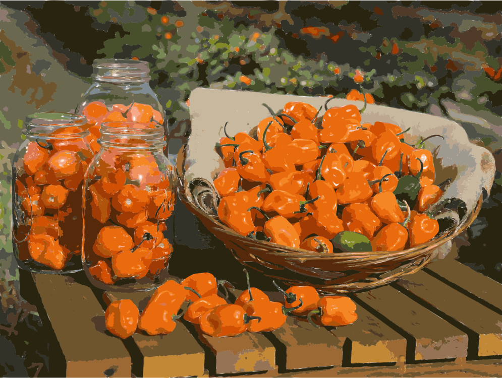 Vegetarian Food,Food,Still Life Photography