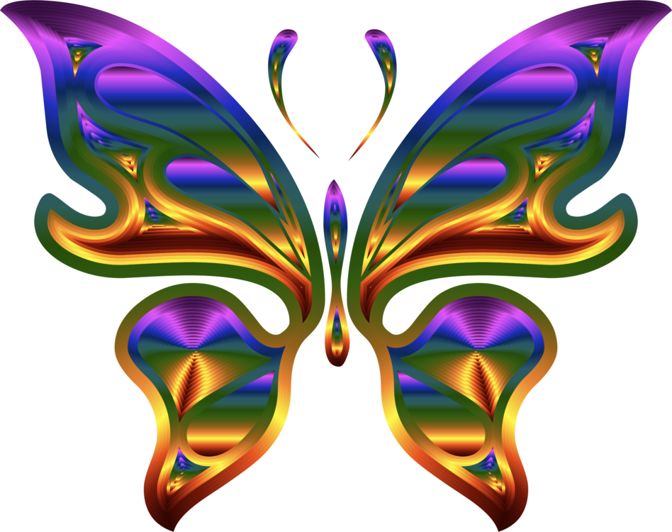Butterfly,Symmetry,Purple