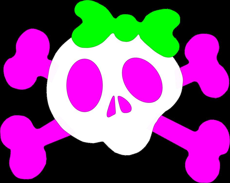 Pink,Flower,Area