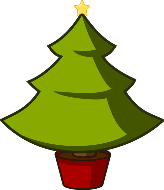 Fir,Pine Family,Christmas Decoration