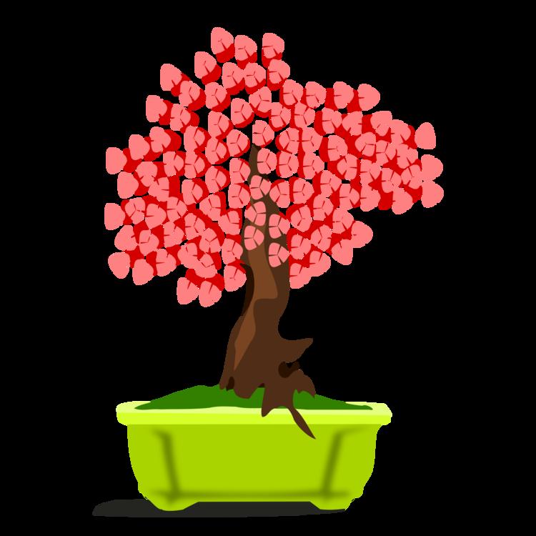 Houseplant,Plant,Flowerpot