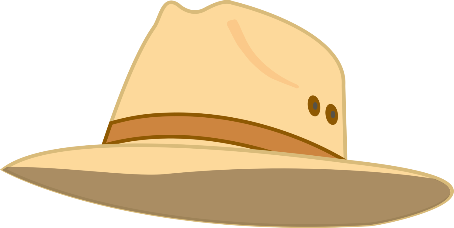 Fedora,Headgear,Cowboy Hat