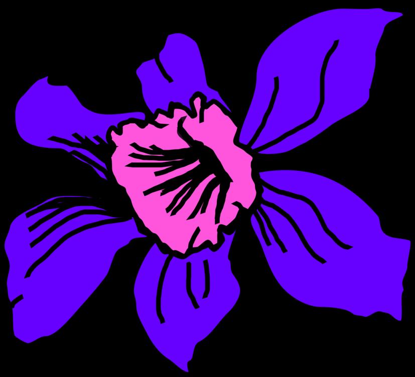 Plant,Flora,Symmetry