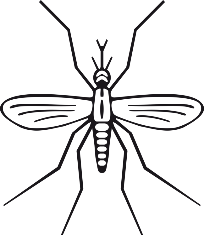 drawing marsh mosquitoes computer icons download fly free commercial rh kisscc0 com mosquito clip art free mosquito clip art silhouette
