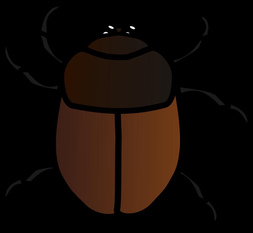 Artwork,Invertebrate,Insect