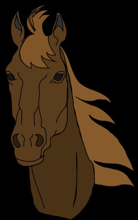 Pony,Livestock,Horse Tack