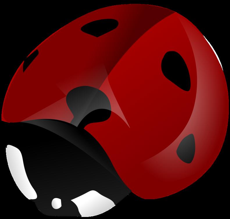 Helmet,Bicycle Helmet,Bicycle Clothing