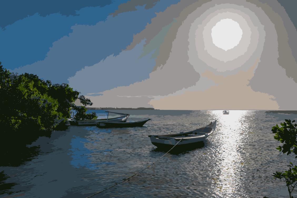 Inlet,Boating,Loch