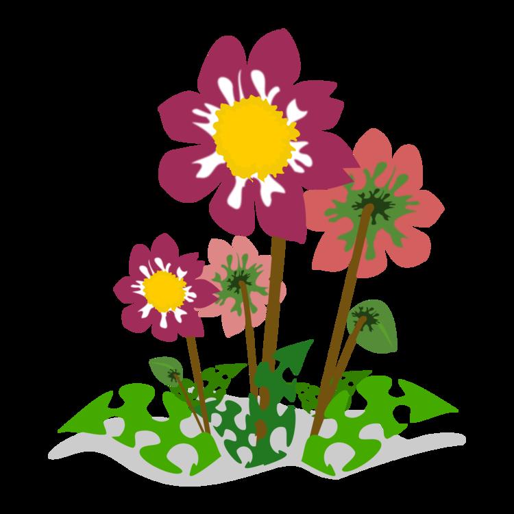 Flowerpot,Plant,Flora