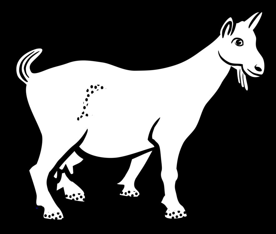 Donkey,Livestock,Monochrome Photography