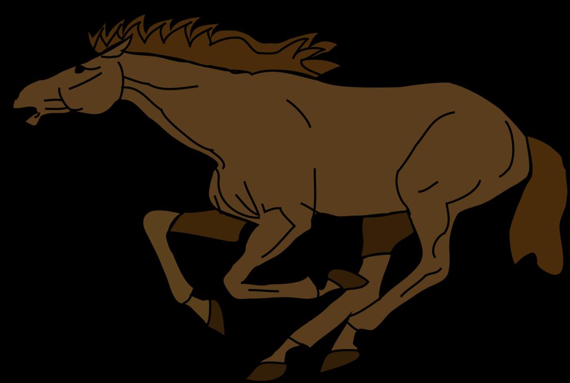 English Riding,Pony,Livestock