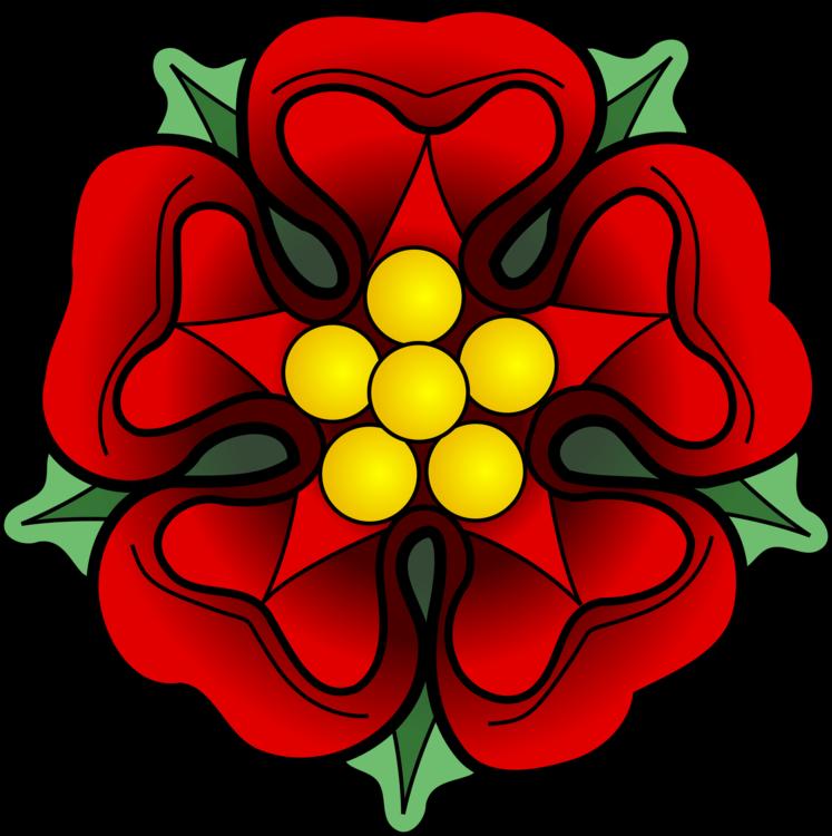 Flora,Symmetry,Petal