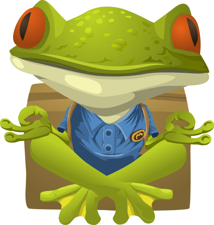 Vertebrate,Yellow,Amphibian