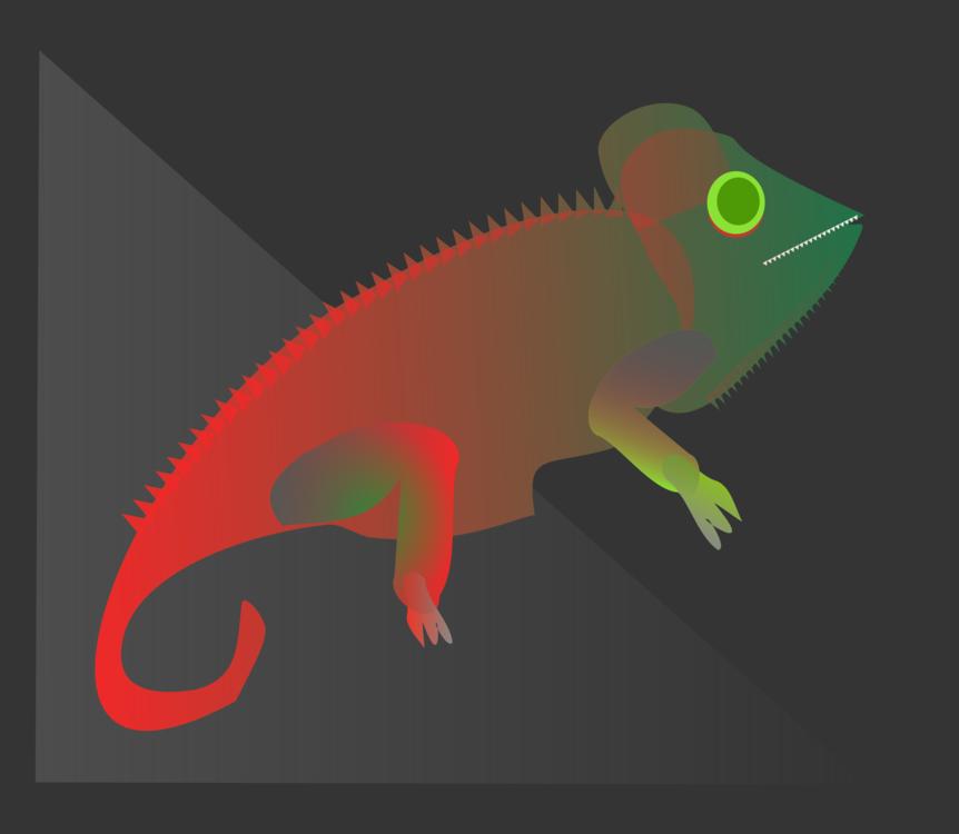 Reptile,Chameleon,Vertebrate