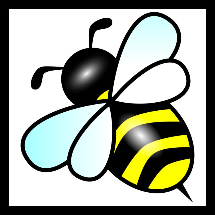 Bee,Honey Bee,Fruit