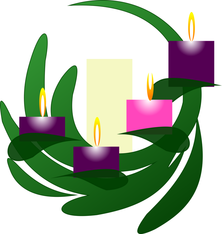Advent candle. Plant flower leaf vector
