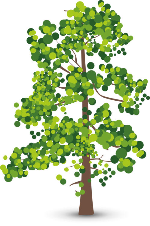 Plant Stem,Leaf,Plant