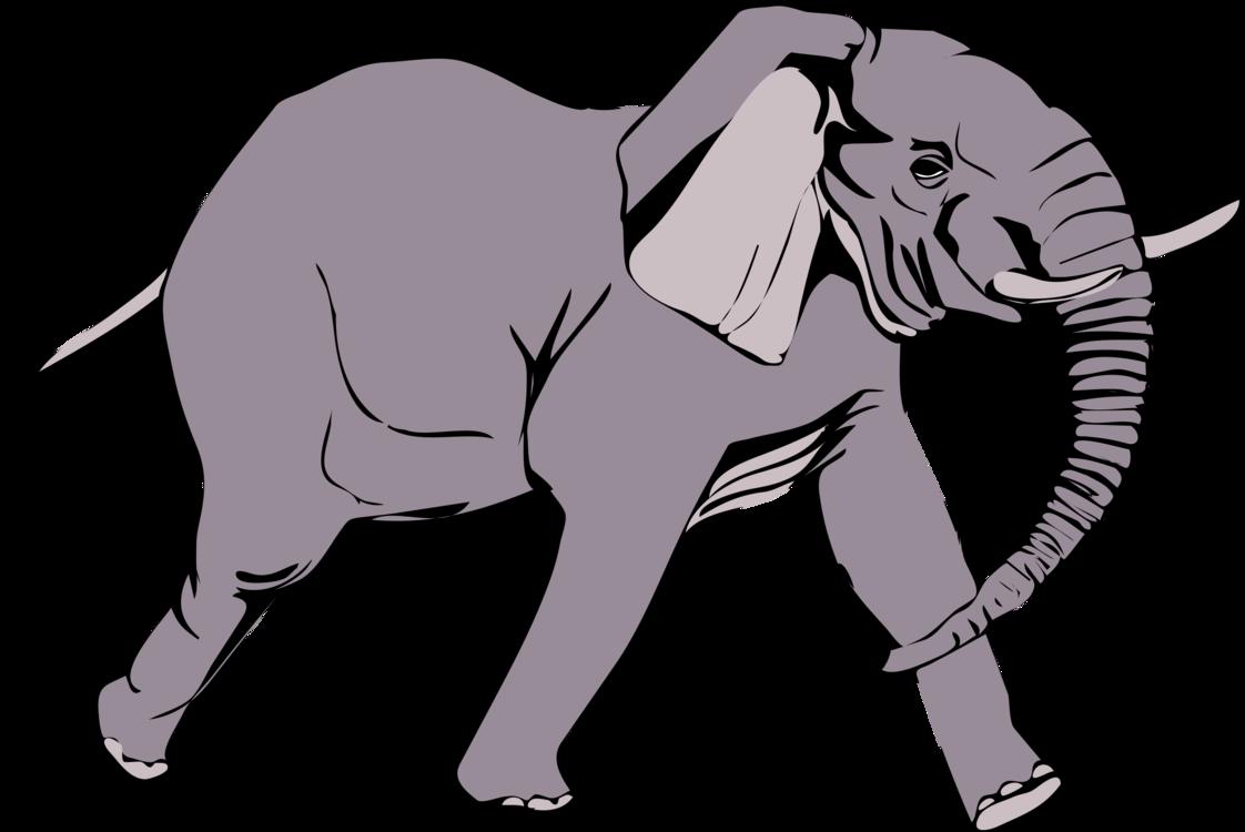 Wildlife,Pack Animal,Carnivoran