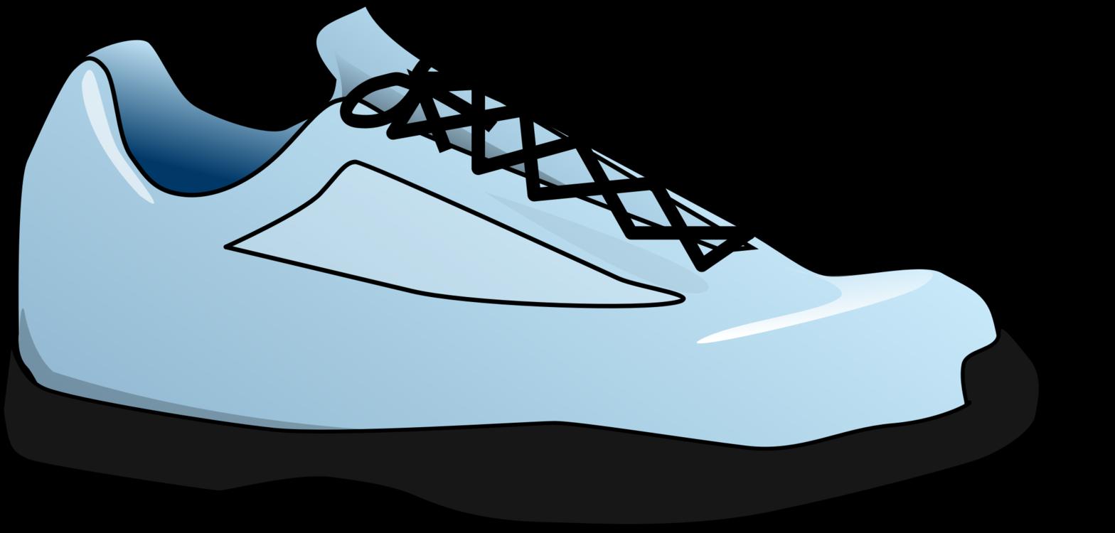 Skate Shoe,Shoe,Cross Training Shoe