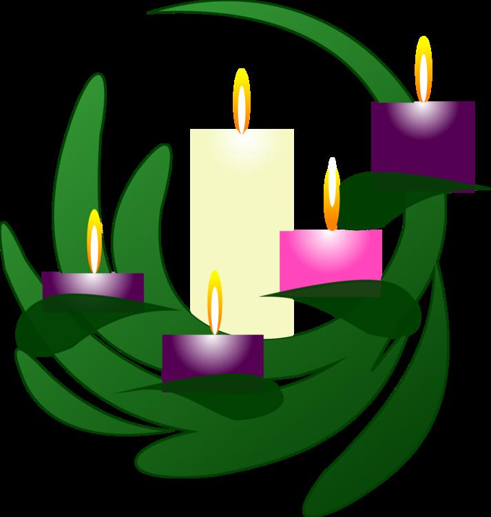 Plant,Flower,Symbol
