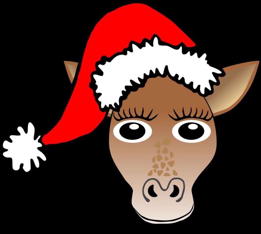 Head,Horse Like Mammal,Deer