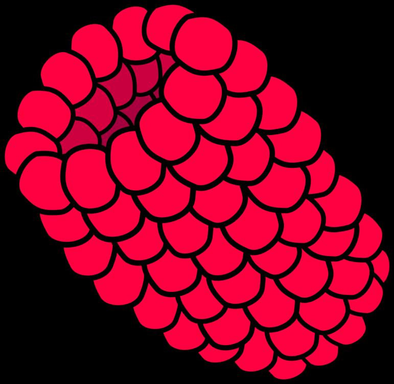 Flower,Organ,Area