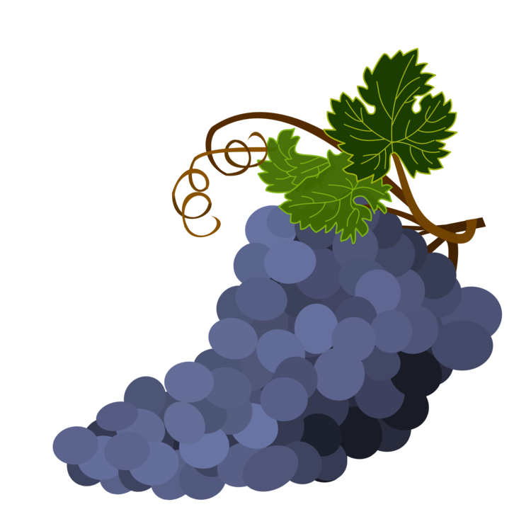 Grape Seed Extract Plant Grape Png Clipart Royalty Free