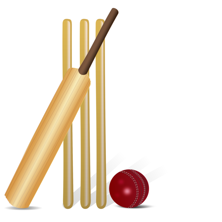 Cue Stick,Sports Equipment,Cricket Bat