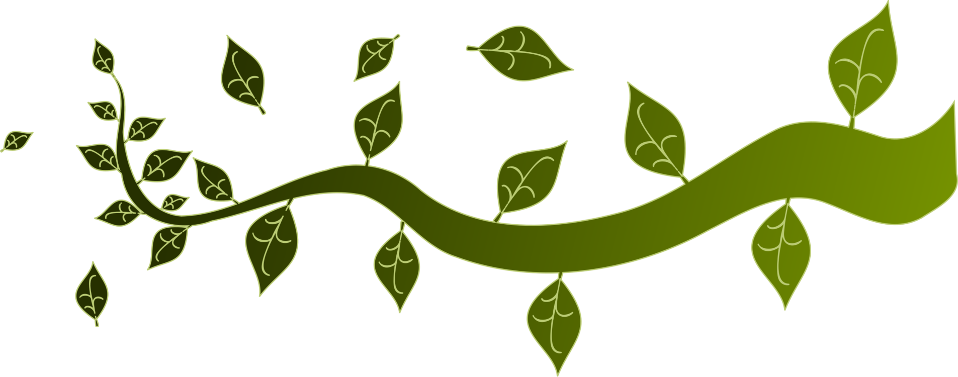 Branch Template Tree Twig Document Free Commercial Clipart Branch