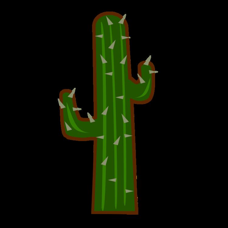 Plant,Cactus,Caryophyllales