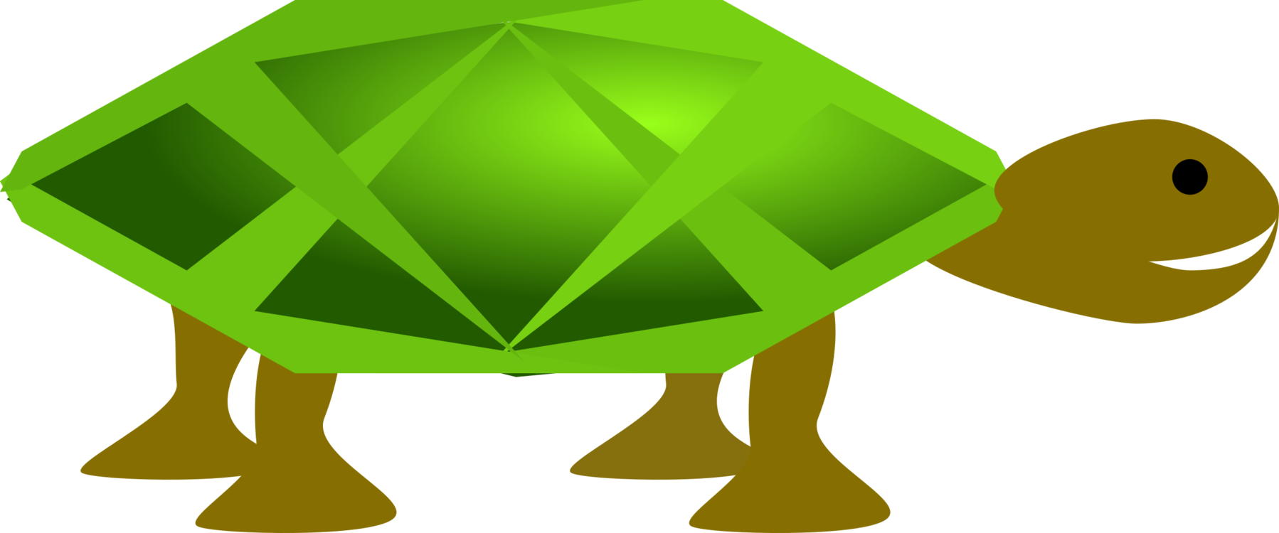 Turtle,Reptile,Leaf
