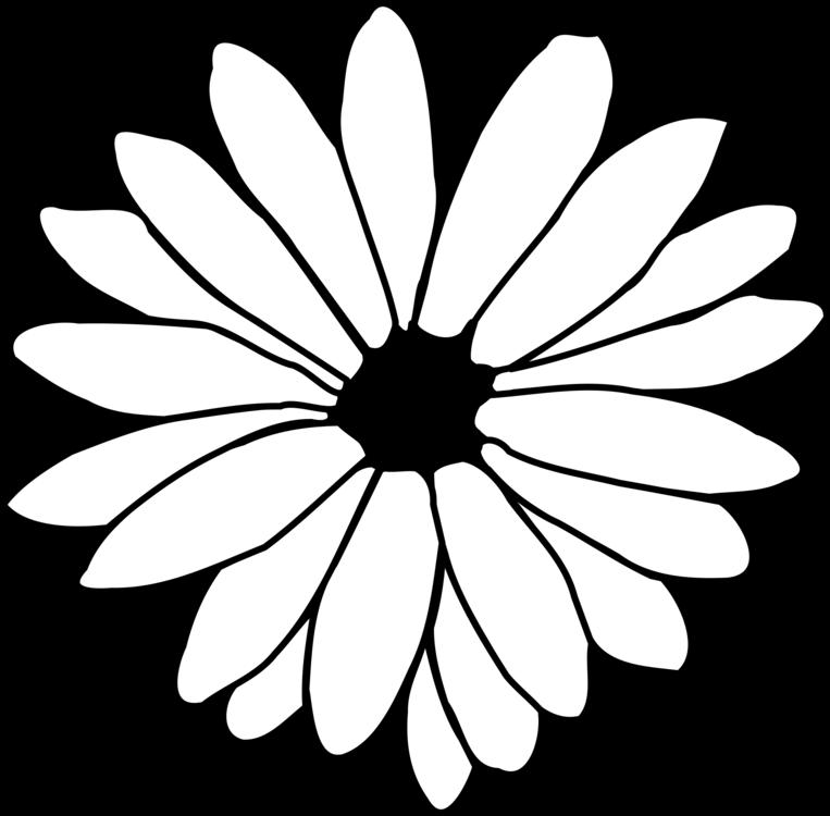 Flower drawing common daisy line art petal free commercial clipart flower drawing common daisy line art petal mightylinksfo
