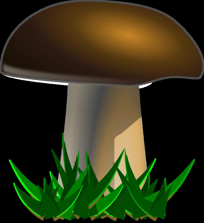 Leaf,Mushroom,Edible Mushroom