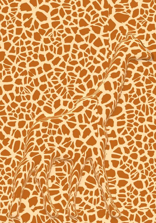 Giraffidae,Big Cats,Giraffe