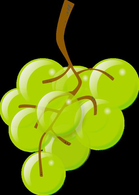 Plant,Leaf,Grapevine Family