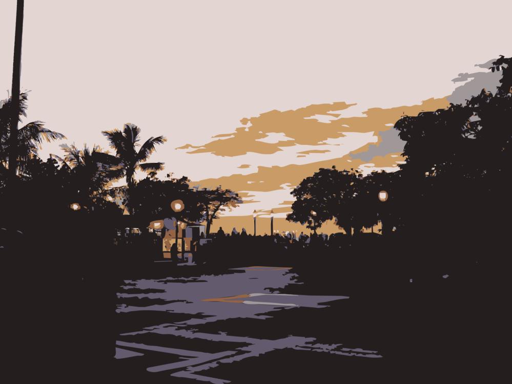 Evening,Silhouette,Dusk