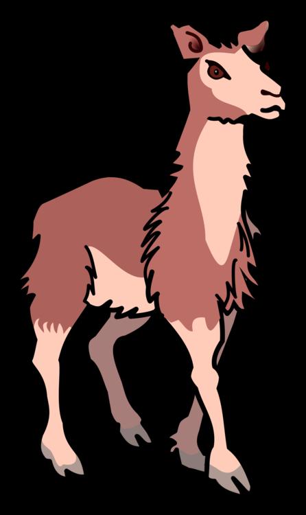 Donkey,Pony,Deer